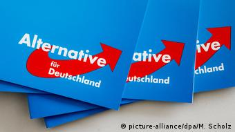 AfD Parteitag in Rendsburg (picture-alliance/dpa/M. Scholz)
