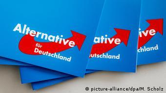 Символика Альтернативы для Германии