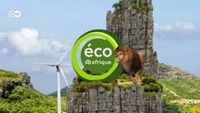Banner eco@afrique