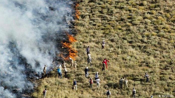 Waldbrand (mehrnews)