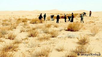 China Wiederaufforstung gegen Wüstenbildung (Imago/Xinhua)