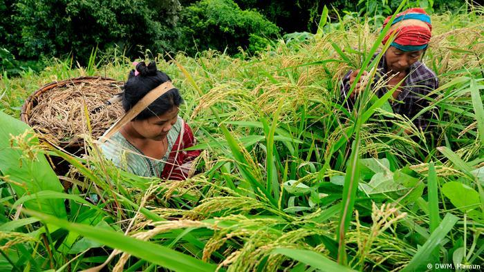 Bangladesch Jhum Kultur