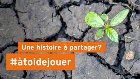éco@afrique Banner Französisch