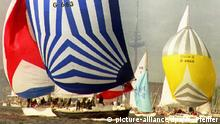 Rund 25O hochseetuechtige Jachten gehen am Samstag an den Start zur Seeregatta Kiel-Eckernfoerde im Rahmen der Kieler Woche. Die Wettfahrt traegt den Namen Aalregatta, weil jedes in Eckernfoerde ankommende Boot traditionell einen geraeucherten Aal erhaelt. Zu dpa/lno 001. |