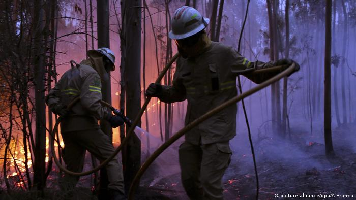 firefighters carry a hose in the woods of Portugal as a fire burns in the background (picture.alliance/dpa/A.Franca)