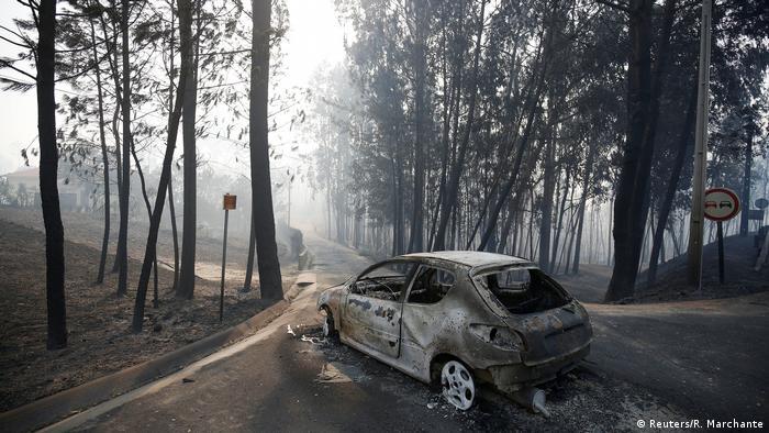 Carro queimado em uma estrada em meio a uma floresta