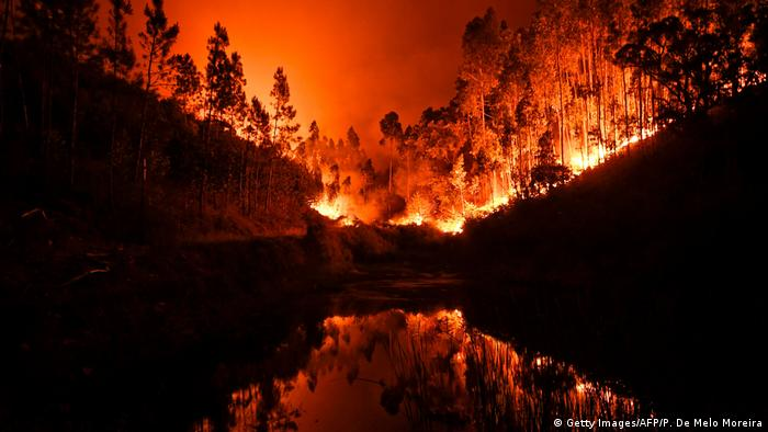 Fires burning through woods in Portugal, turning the sky orange (Getty Images/AFP/P. De Melo Moreira)