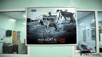 A picture saying from goat to coat - inside a cashmere factory in Ulaanbataar