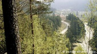 A valley is photographed through the trees in the Carpathian Mountains