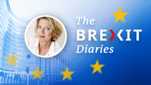 The Brexit Diaries