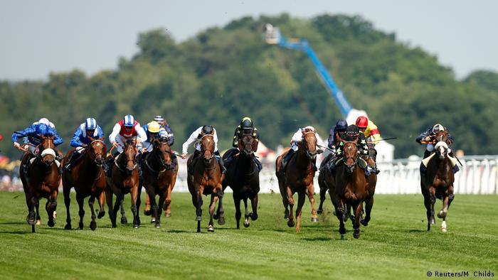 Großbritannien - Pferderennbahn Ascot mit Prinz William und Herzogin Kate (Reuters/M. Childs)