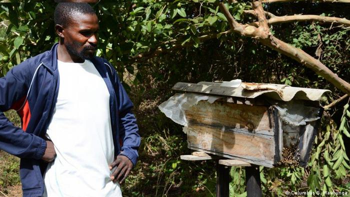 A beekeeper next to a hive