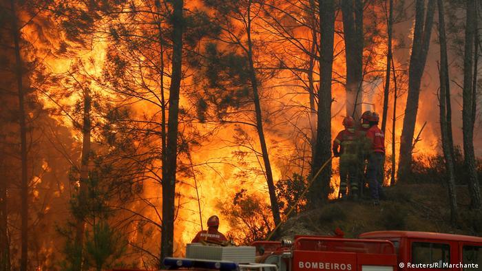 Portugal Waldbrände zu 95 Prozent unter Kontrolle
