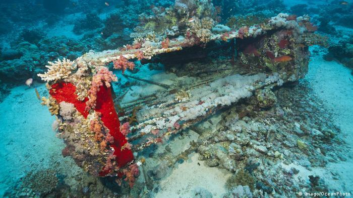 Frankreich Jacques Cousteau und seine Erfindungen (Imago/OceanPhoto)