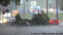 Ein Auto fährt am 22.06.2017 in Magdeburg (Sachsen-Anhalt) an einem umgestürzten Baum vorbei. Nach hochsommerlichen Temperaturen haben in Ostdeutschland die schweren Unwetter eingesetzt. Foto: Peter Gercke/dpa-Zentralbild/dpa | Verwendung weltweit