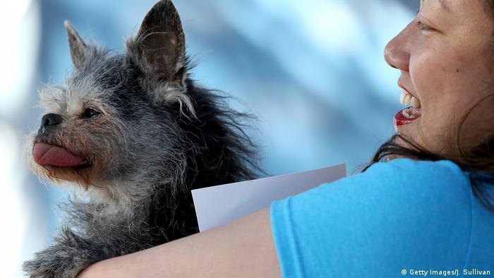 USA Kalifornien Wettbewerb Worlds Ugliest Dog (Getty Images/J. Sullivan)