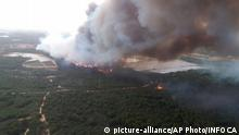 Spanien Waldbrand im Donana National Park (picture-alliance/AP Photo/INFOCA)