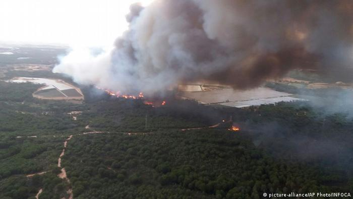 Forest fire in Donana National Park, Spain (picture-alliance/AP Photo/INFOCA)