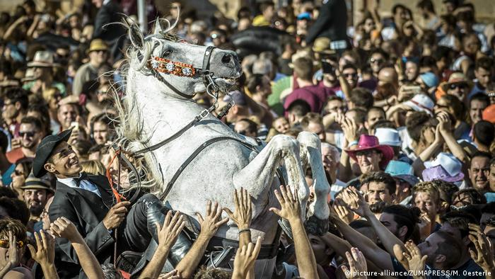 horse rearing in middle of crowd(picture-alliance/ZUMAPRESS/M. Oesterle)