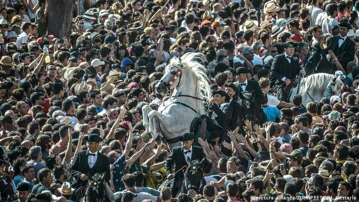 crowds with rearing horses (picture-alliance/ZUMAPRESS/M. Oesterle)