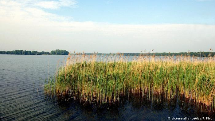 Озеро в Вандлице
