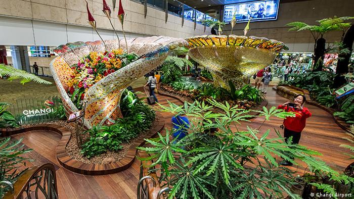 Чарівні сади в аеропорту Сінгапура