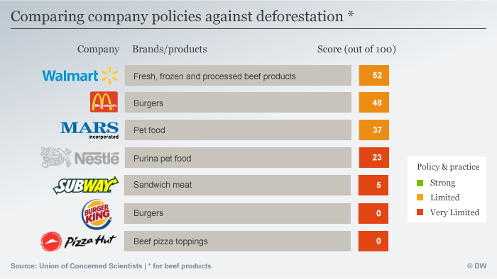 Beef (and Burger King) still eating away at forests