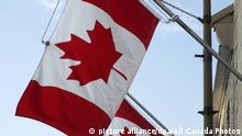 Canadian flags line Sussex Dr. across from Nat'l Art Gallery, Ottawa, Ontario, Canada. | Verwendung weltweit, Keine Weitergabe an Wiederverkäufer.