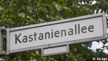 Straßenschild Kastanienallee