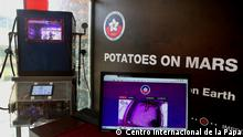 Projekt von der International Potato Center in Peru