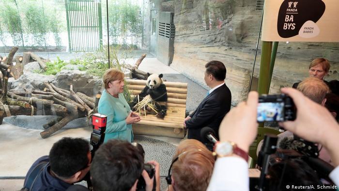 Berlin Willkommenszeremonie Pandabären | Xi Jinping & Angela Merkel (Reuters/A. Schmidt)