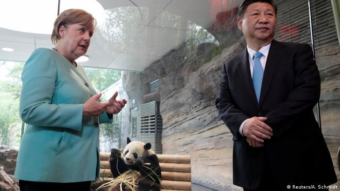 Berlin Angela Merkel und Xi Jinping im Berliner Zoo (Reuters/A. Schmidt)
