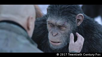 Film Still aus PLANET DER AFFEN: SURVIVAL mit verletztem Affe (War For The Planet Of The Apes) (2017 Twentieth Century Fox)