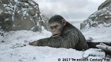 Film Still PLANET DER AFFEN: SURVIVAL (War For The Planet Of The Apes)
