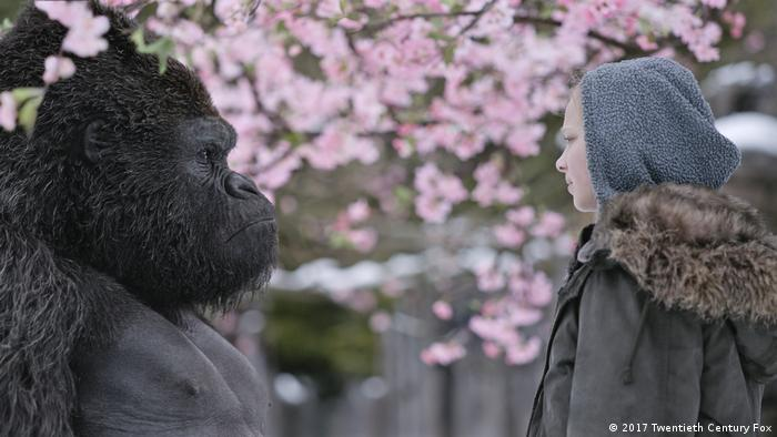 Film still from War For The Planet Of The Apes showing an ape and a girl in front of a blooming tree (2017 Twentieth Century Fox)