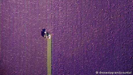 4. International Drone Photography Contest (dronestagram/jcourtial)