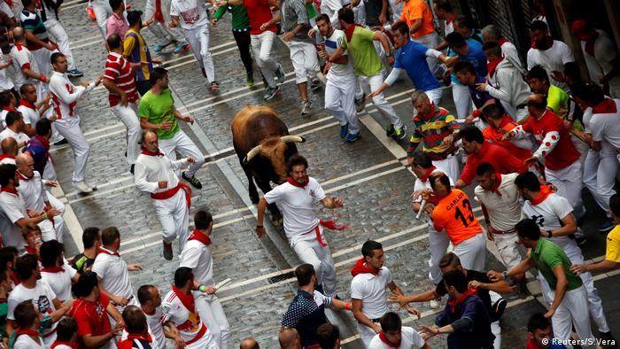 Lari bersama banteng di Pamplona Spanyol