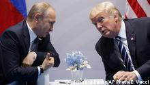 The G20 meeting of Donald Trump and Vladimir Putin (picture-alliance/AP Photo/E. Vucci)