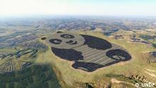 China Panda Solar Farm