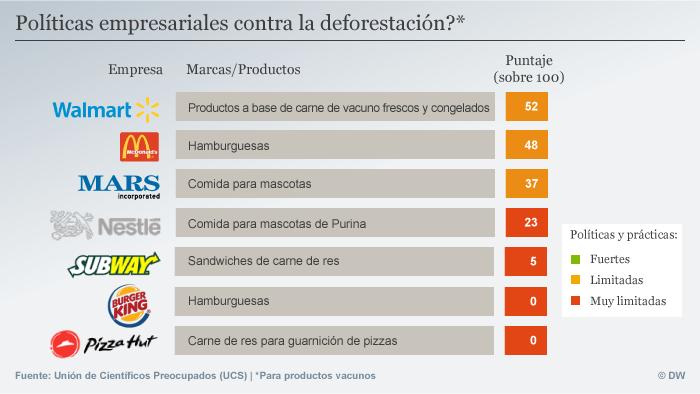 Infografik deforestacion SPA