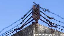 Themenbild; Eine rostige Stacheldraht - Zaun Ecke gegen blauen Himmel fotografier am 05. Februar 2017 in Wien. /// Topic image; A rusty barbed wire - fence corner against blue sky photograph on 05 February 2017 in Vienna. |