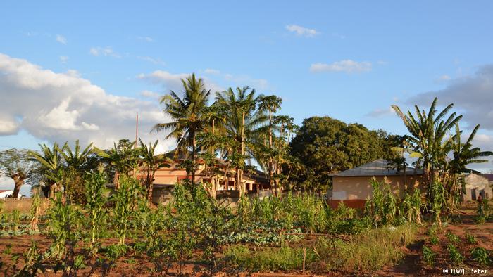 Mosambik Hinterhof Missionare des heiligen Johannes des Täufers Marrere, Nampula