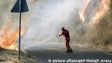 13.07.2017+++ An Italian civil protection staffer hoses down water to extinguish a fire in San Pietro in Guarano, near Cosenza, Southern Italy, Thursday, July 13, 2017. Wildfires that have consumed vast swaths of southern Italy and forced the evacuation of hundreds of holidaymakers on Thursday claimed the lives of two pensioners trying to defend their property. (Francesco Arena/ANSA via AP) |