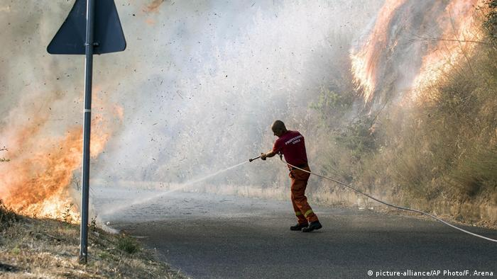 Wildfires in Italy (picture-alliance/AP Photo/F. Arena)