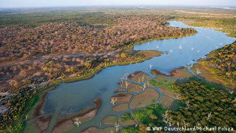 An aerial view of Selous Game Reserve