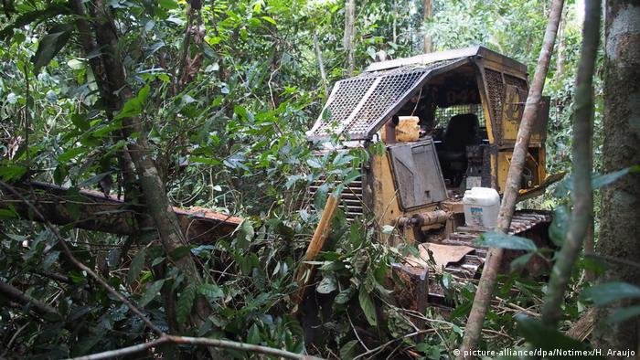 Brasilien Jamanxim Schutzgebiet Illegale Abholzung Planierraupe,