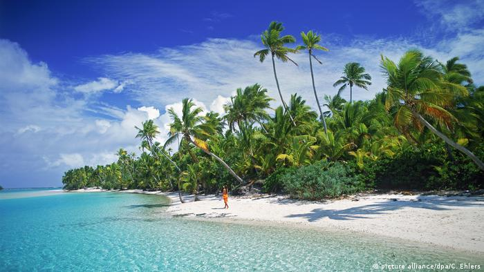 Gorgeous view of a tropical island: palm trees, coast, blue sky, a person running along the coast