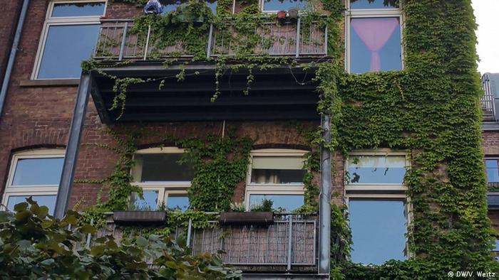 Укритий плющем фасад будинку та балкони