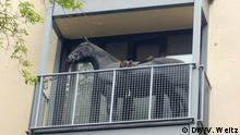 Balkone als Ausdruck von Kreativität