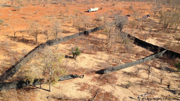Mosambik Luftbild Sango Wildlife Conservancy